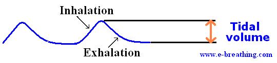 tidal volume