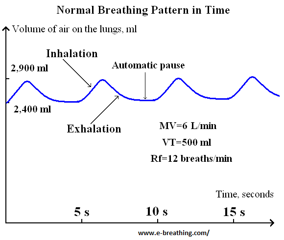 Normal breathing pattern at rest